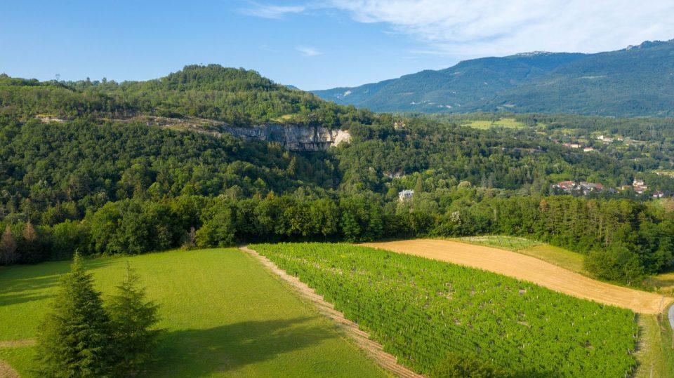 domaine Claude Collomb - Aoc Bugey - Pente Grand Colombier